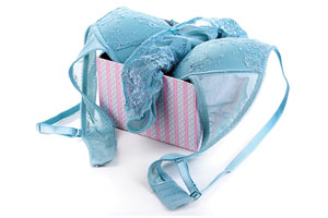Blue bra and panty set in a pink stripped box