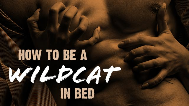 How to be a Wildcat in Bed