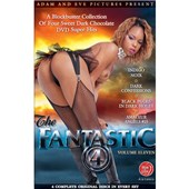 the fantastic 4 vol 11 black dvd collection