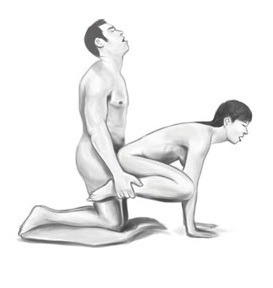 Leapfrog Illustrated Sex Position