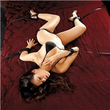 Scarlet Bed Bondage System shown on model
