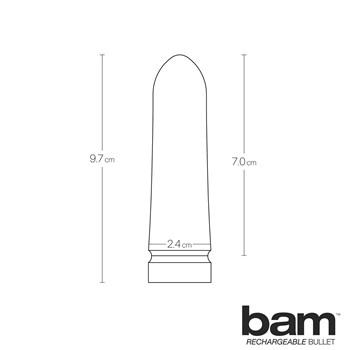 Bam Rechargeable Bullet infogram