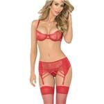 Sheer Beauty Bra & Garter Set full front