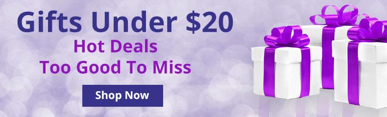 Shop Gifts Under $20!