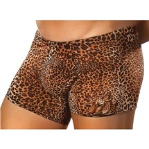 Brown Leopard Shorts close up