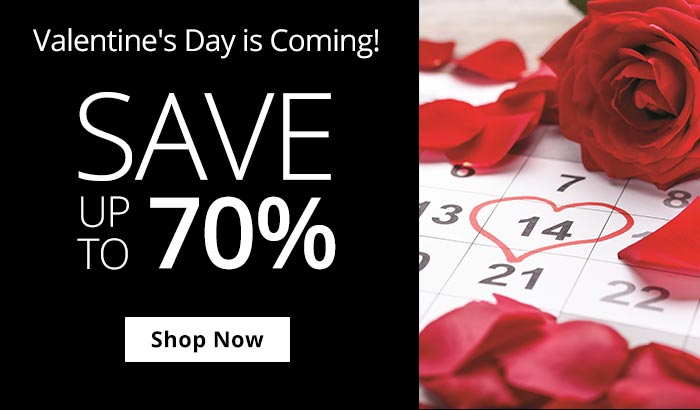 Shop Valentines Is Coming Sale!