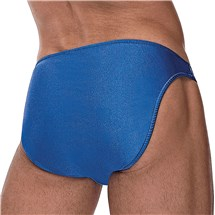 The Pouchless Brief blue back