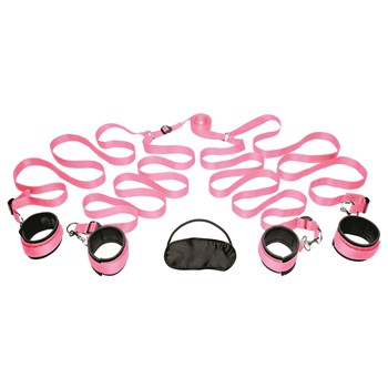 Frisky Pink Bedroom Restraint Kit Complete kit Shot