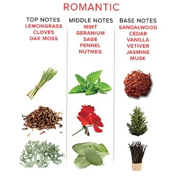 EYE OF LOVE ROMANTIC PHEROMONE 4