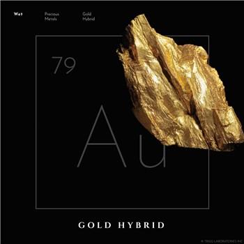 E485 WET GOLD HYBRID LUBRICANT data 2